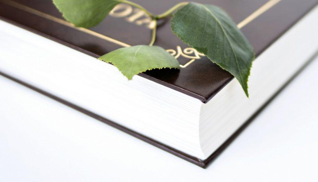 rodova-kniha-kronika-zivota-klasik